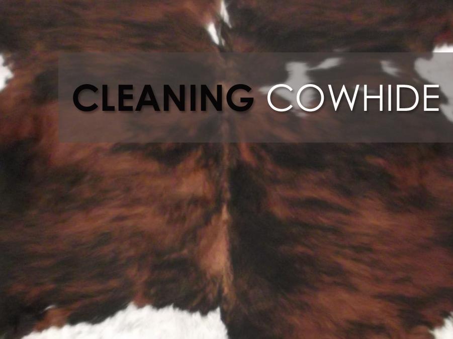 cowhide rugs blog – cleaning your cowhide rug