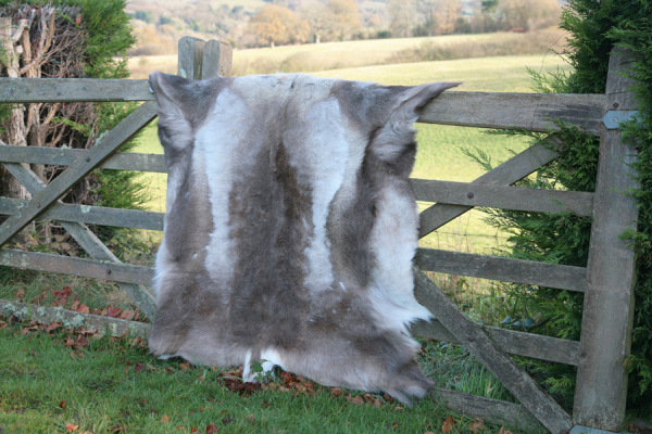 Reindeer Hides – Not Just For Winter
